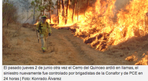 Wildfires in Michoacan