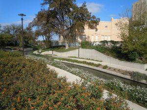 The Museum Reach Milkweed Patch on the San Antonio Riverwalk