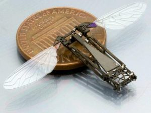 """Butterfly inspired flapping wing MAV """"micro aerial vehicle"""""""