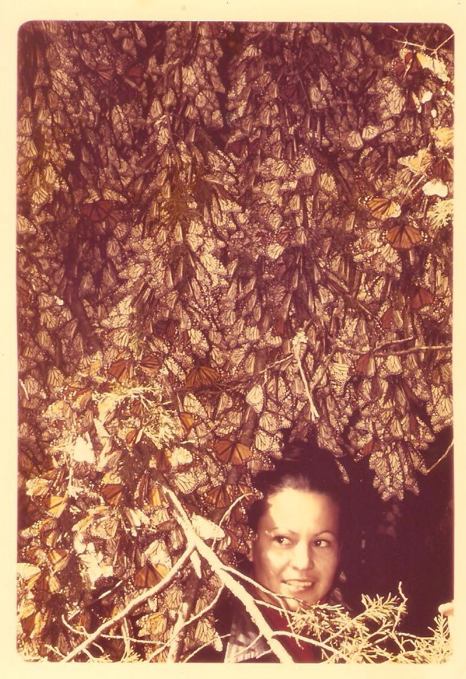 "Catalina Trail, January 2, 1975, the day she and Ken Brugger ""discovered"" the Monarch butterfly Overwintering Sites"
