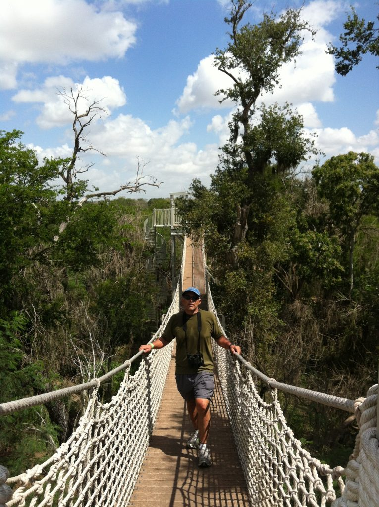 Canopy Walk, feels like the jungle at Santa Ana Wildlife Refuge