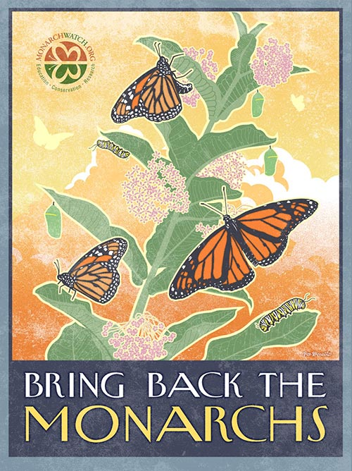 bring-back-the-monarchs