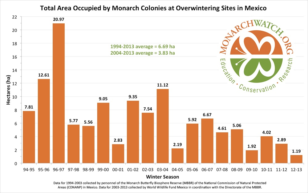 The decline of the Monarch butterfly population. In the 90s, their roosting grounds averaged 22 acres. Graphic via Monarch Watch