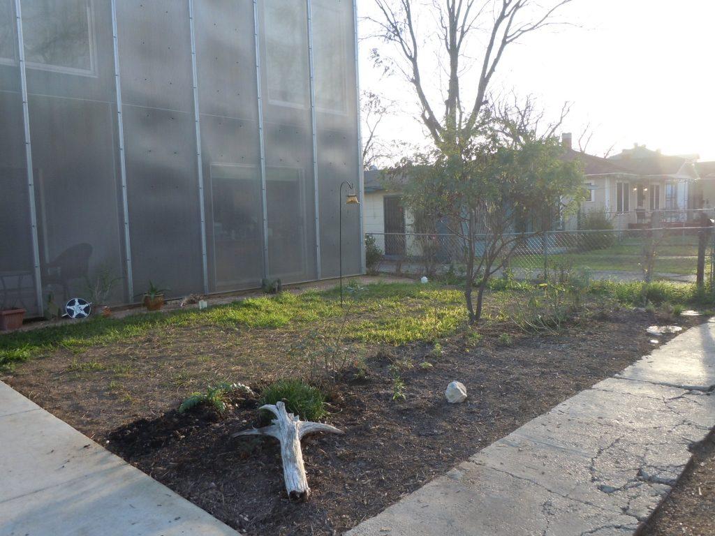 Future butterfly garden in Lavaca