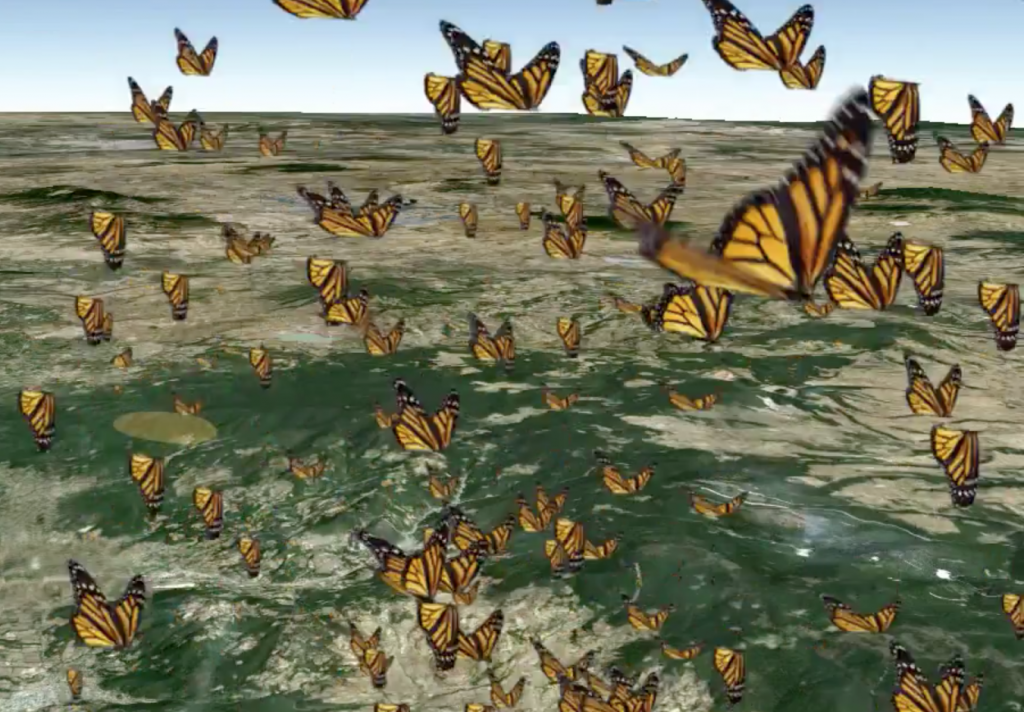 Monarch Butterfly Google Earth Tour