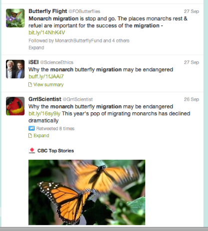 Twitter search for tracking Monarchs