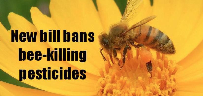 Save America's Pollinators