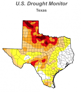 Texas Drought, July 2014