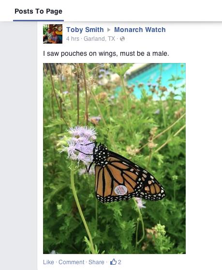 Screen Shot 2014-09-07 at 2.29.58 PM