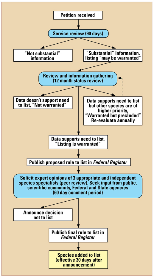 Endangered Species Act Process