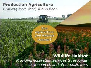 Ed Sachs Monsanto presentation
