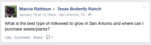FBCommentonmilkweed