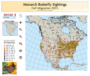 Monarch roosts