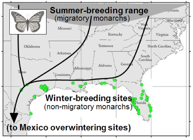 winter breeding map