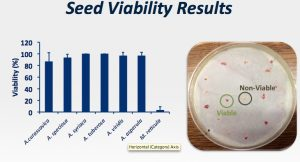 Milkweed viability slide