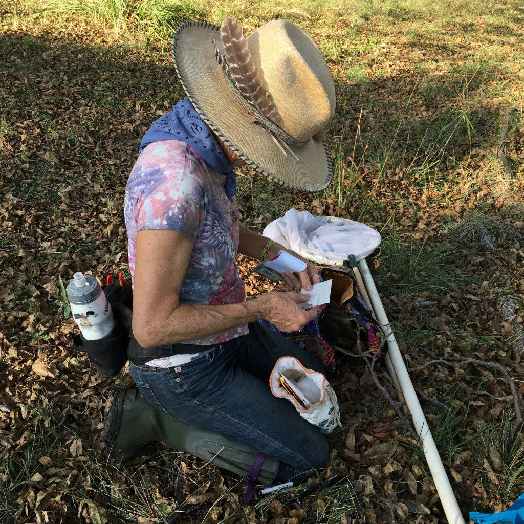 Monika on Llano tagging