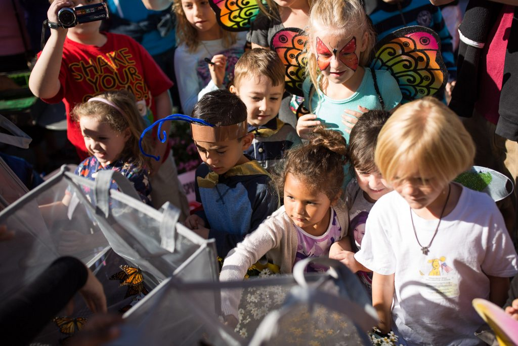 Kids scramble to get an up close look at Monarch butterflies. Photo by Scott Ball, Rivard Report