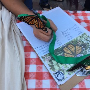 Monarch butterfly helps recurit signers for a petition to stop the copper mine at the Monarch butterfly roosting sites in Angangueo, Mexico. Photo by Alex Holler