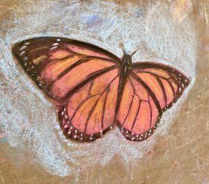 Monarch Drawing